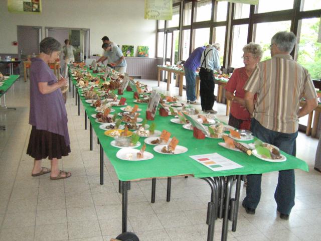 Exposition Annuelle SMP 18 & 19 octobre 2014 Domaine de Givray à Ligugé