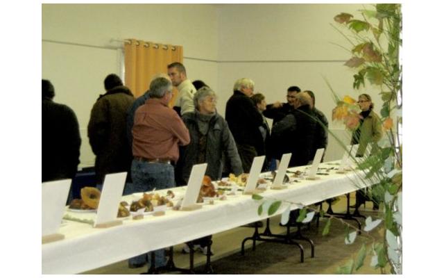 Exposition mycologique de Chéneché (86) – Dimanche 26 octobre 2014